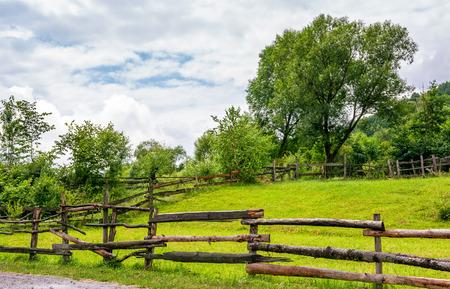 houten hek op grasachtig landelijk veld met boom. mooie lente landschap
