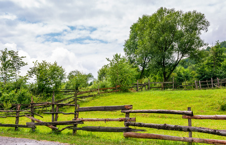 wooden fence on grassy rural field with tree. lovely springtime scenery  Stock Photo