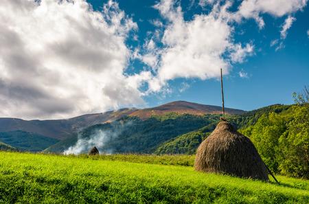 흐린 여름 하늘 아래 산에서 녹색 초원에 건초의 스택 스톡 콘텐츠