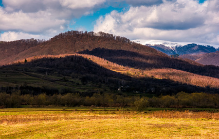 rural fields at the foot of the forested mountain with snowy top. lovely countryside springtime scenery on a cloudy day Stock Photo - 91941066