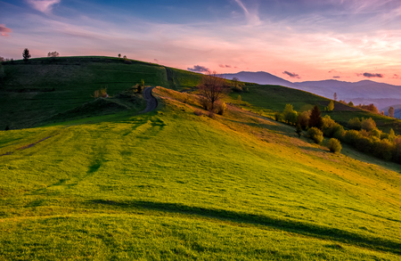 grassy pasture on hillside at sunset. beautiful springtime countryside in mountainous rural area Stock Photo