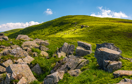 grassy slope with boulders in summer. beauty of the nature concept. location Polonina Runa in Carpathian mountains of Ukraine Stock Photo