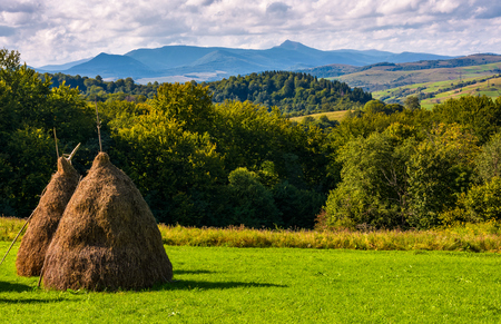 haystack on gcountrysiderassy lawn on hillside. ecology agricultural concept. Location near Pikui mountain, Transcarpathian region, Ukraine Stock Photo