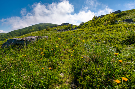 path through grassy meadow to huge boulders. beautiful mountainous landscape on summer morning Stock Photo - 91941508