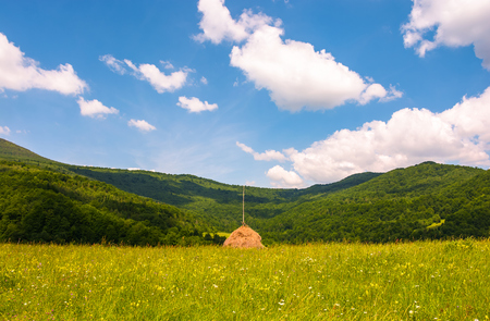 haystack on a grassy pasture in mountains. beautiful summer scenery on a fine weather day Stock Photo