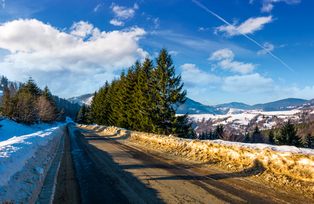 road through forest in winter. beautiful nature scenery with spruce trees on  cloudy day. lovely transportation background.