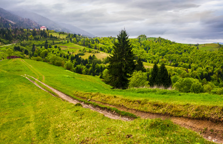 dirt road through grassy slope in rural area. beautiful countryside of Carpathian mountains on an overcast springtime day Stock Photo