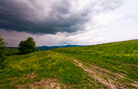 countryside road through grassy field. beautiful mountainous landscape of Carpathians before the storm Stock Photo