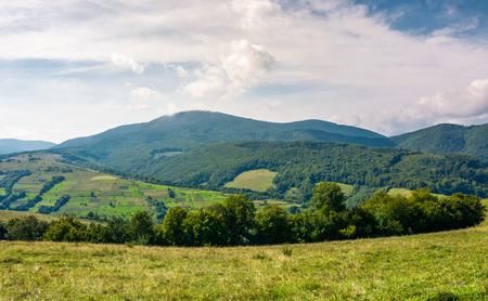 Landwirtschaftliche Felder auf grasbewachsenen Hügeln in den Bergen . Schöne ländliche Landschaft von Karpaten Standard-Bild - 92261069
