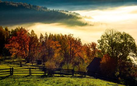 霧の秋の朝の農村地域。山の豪華な田園風景 写真素材