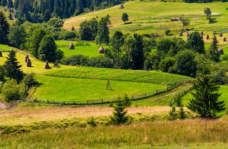 農業の丘や干し草の山。春の美しい田舎の風景。時代遅れの産業アプローチ、伝統的な農業概念