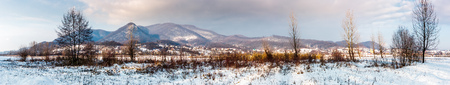panorama of mountainous countryside in winter. trees on snowy meadow not far from the village at the foot of the mountain.