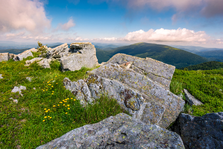 Carpathian mountains with grassy slopes and rocks. beautiful mountainous landscape in summer Stock Photo