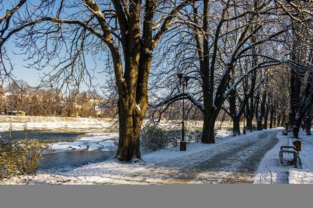 Besneeuwde Kiev-dijk in Uzhgorod. mooie en zonnige winterdag. loop in de frisse lucht langs de kastanjeboomsteeg Stockfoto