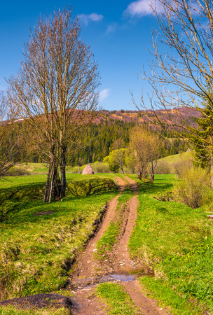 Countryside road through rural area in mountains. Lovely springtime scenery