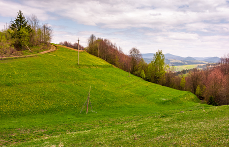 grassy hills of mountainous rural area. beautiful countryside landscape in springtime on a cloudy day