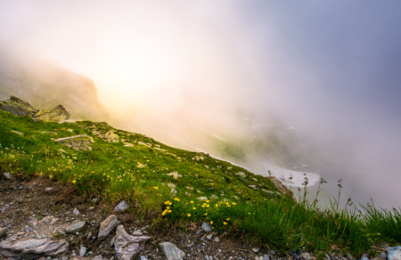 glowing fog over the grassy slope. beautiful nature background with gorgeous weather condition of Fagaras mountains