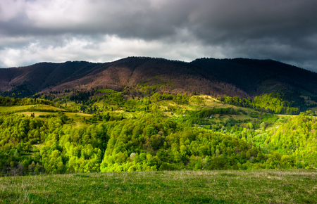 forested mountain slopes in springtime. lovely countryside landscape of Carpathian mountainous rural area under the cloudy sky