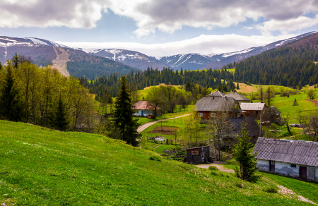 Podobovets village on grassy and forested hills. beautiful rural landscape at the foot of the Borzhava mountain ridge in springtime Stock Photo