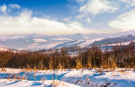 明るい冬の日に山岳地帯。美しいカルパチアの風景
