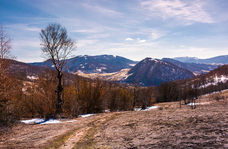 mountainous scenery of Uzhansky National Park. leafless forest on hills with weathered grass and some snow in springtime Stock Photo