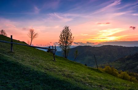 grassy slope rural area at sunset. beautiful mountainous landscape of Ukainian Carpathians in springtime Stock Photo