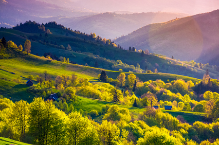 rural landscape of Carpathians in springtime. Spectacular view of grassy rolling hills in evening Фото со стока