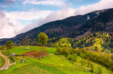 산에서 잔디 시골 언덕입니다. 국가로, 나무 울타리와 봄 날에 해명 아름 다운 농업 풍경. 스톡 콘텐츠