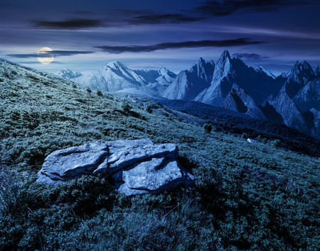 composite of meadow in rocky mountains at night in full moon light. beautiful unrealistic landscape in summertime