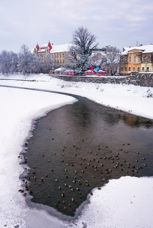 Uzhgorod, Ukraine - February 5, 2010: flock of ducks on the frozen River Uzh. Lovely cityscape of Uzhgorod town near the Theater square in winter