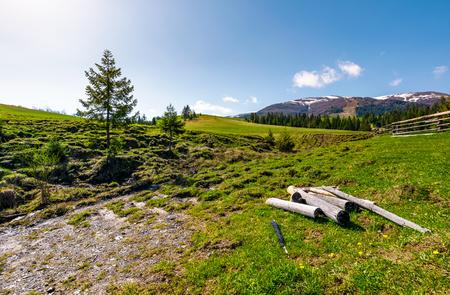 봄에서 산악 농촌 지역에서 건조 풍 화 로그. 구과 맺는 숲 근처 잔디 경사면에 울타리와 함께 사랑스러운 시골 풍경. 눈 덮인 봉우리가있는 아름다운