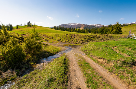 country road across the brook among grassy fields. beautiful springtime landscape of Ukrainian alps. mountain ridge with snowy tops in the distance