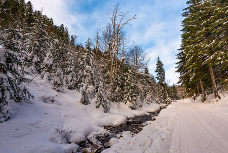 snow covered road along the path through forest. beautiful nature scenery in winter. location Synevyr National Nature Park, Ukraine Stock Photo