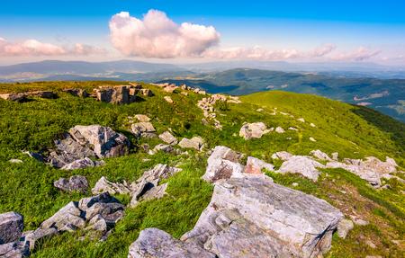 高山の草原にたくさんの岩がある。山の高地の美しい夏の風景