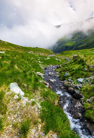 ファガラス山脈の野生の小川。草の斜面と岩の崖と美しい夏の風景。低い雲が山の尾根の頂上を覆う 写真素材