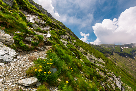 path along the steep slope. beautiful summer landscape with rocks on grassy hillside. low clouds cover the top of mountain ridge Stock Photo