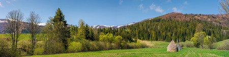 panorama of rural field in mountains. haystack on grassy field among the forest