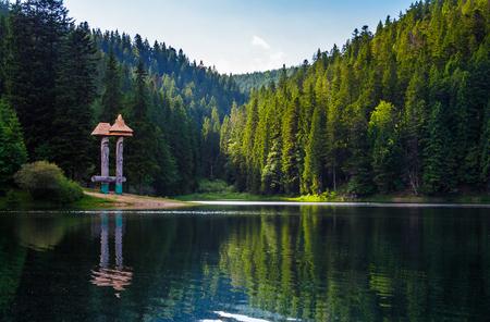 Beau paysage du lac Synevyr. La forêt d?épicéas en soirée réfléchit dans l?eau ondulée. point de vue bas Banque d'images - 94903470