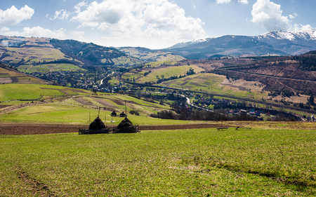 rural area in Carpathian mountains. haystacks on grassy agricultural fields. village down in the valley. mountain with snowy top on a beautiful springtime day