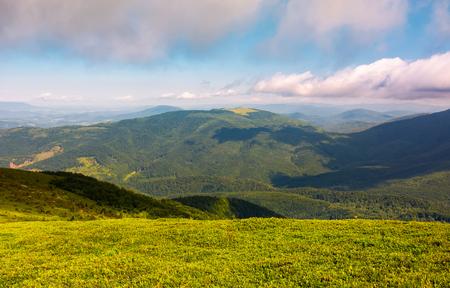 曇りの日に丘の中腹の草原。夏の美しい山岳風景。場所 ルナ山, ウクライナ