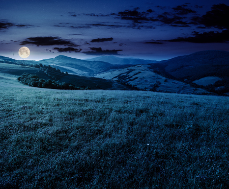 grassy meadow in mountains at night. beautiful summer countryside under the gorgeous sky