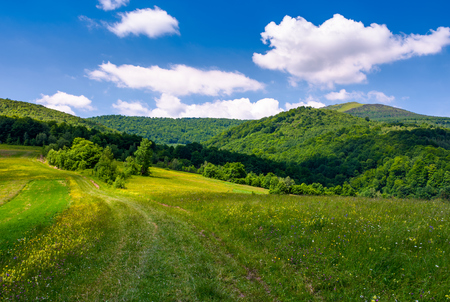 grassy rural fields on mountain slopes. country road runs uphill in to the forest. beautiful landscape at the foot of Pikui mountain. Stock Photo