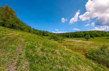 Gemeine Lichtung auf Hügel unter dem Wald . Schöne Naturlandschaft unter den Wolken auf einem blauen Himmel im Frühjahr Standard-Bild - 95760049