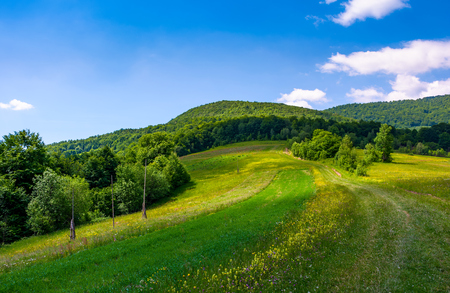 grassy rural fields on mountain slopes. country road runs uphill in to the forest. Stock Photo - 95760084
