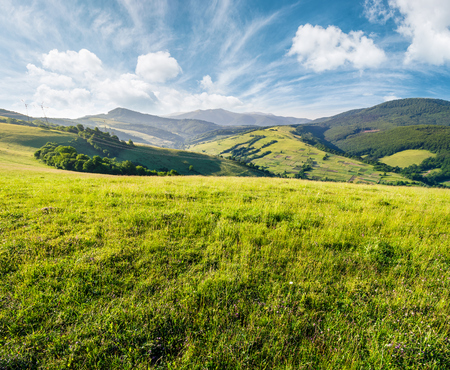 grassy meadow in mountains. beautiful summer countryside under the gorgeous sky