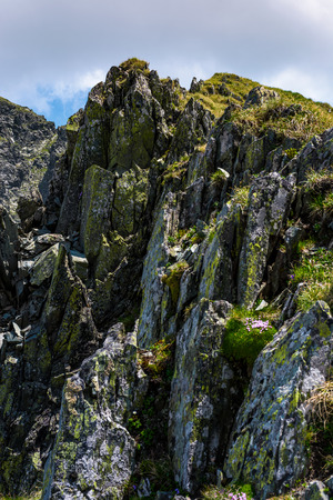 rocky cliffs of Fagaras mountains in summertime. beautiful nature scenery on high altitude Stock Photo - 96798004