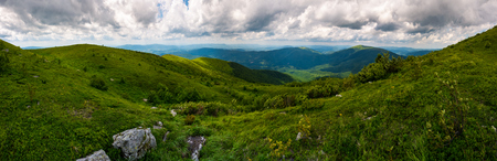 grassy hillside of Carpathians on overcast day. gorgeous panorama with rolling hill and mountain ridge in the distance. popular tourist destination - Runa mountain, TransCarpathian region Ukraine Imagens