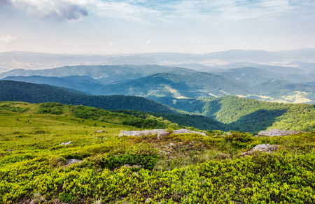beautiful landscape of Carpathian mountains. rolling hill with huge boulders among the green grass in summrtime