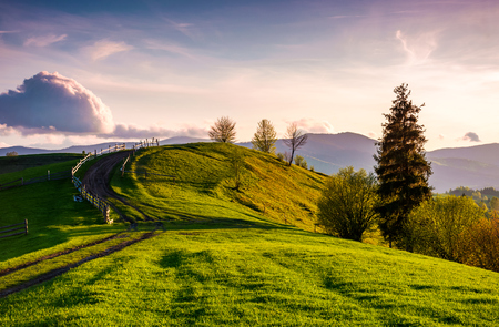 country road through grassy hill at sunset. lovely landscape in mountains under the ravishing evening sky with some fluffy clouds.