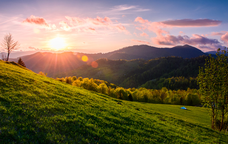 pink sunset over the mountains in springtime. gorgeous Carpathian countryside. beautiful rural scene with fields and trees Stock Photo